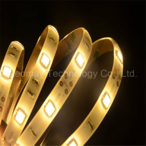 High lumen Indoor SMD5050 LED Strips with CE pictures & photos