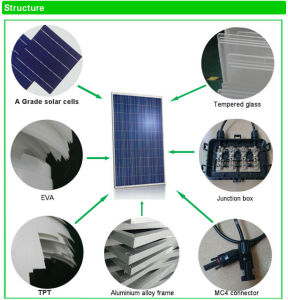 for Home Use From Chinese Factory High Quality Cheap Solar Solar Panel 300W pictures & photos