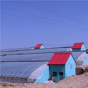 China Factory Price Solar Greenhouse Used for Vegetable Growing pictures & photos