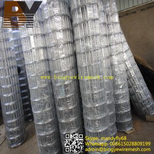 Heavy Galvanized Welded Wire Mesh pictures & photos