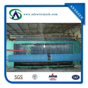 0.55/0.90mmx3/4′′ PVC Hexagonal Wire Mesh, Chicken Wire, Chicken Wire Mesh pictures & photos