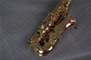 Alto Saxophone/ Saxophone Gold Brass (SAA-P) pictures & photos