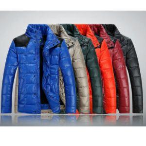 Outdoor Winter Jacket Various Color Winter Coat pictures & photos