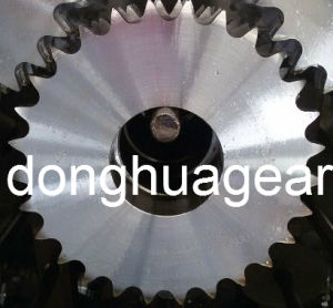 Zinc Plated Sprocket with Keyway and Screw 60b10z pictures & photos