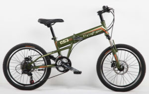 Suspension Bicycle, Folding Mountain Bikes (FP-FDB-D028) pictures & photos