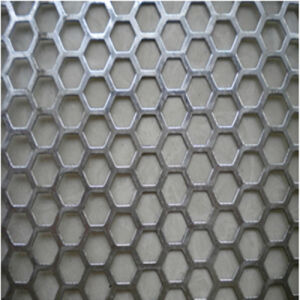 Perforated Metal Mesh of Different Materials pictures & photos