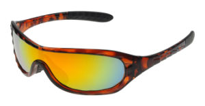 Bicycle Riding Sport Glasses/Sunglasses/Racing Goggles (XQ161)