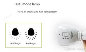 Portable Solar Energy Hand Lamp IP44 Outdoor Camping LED Light pictures & photos