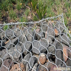 Heavy Hexagonal Wire Mesh / Gabion Mesh pictures & photos