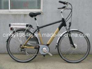Promotion 700cc En15194 Approved Dutch Electric Bike with Nexus-7 Speeds Roller Brake (HJ-14C25)