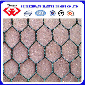 60X80mm Green Color PVC Coated Hexagonal Chicken Wire Netting pictures & photos