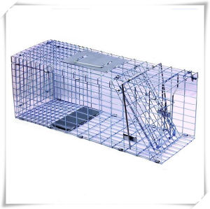 Foldable Metal Fox Trap Garden Cage (V14022) pictures & photos