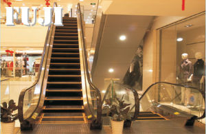 Indoor Escalator with 30 Degree 600mm Step Width pictures & photos