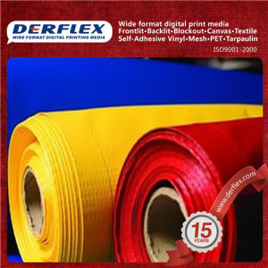 Inflatable PVC Tarpaulin Fabric Factory Supply pictures & photos