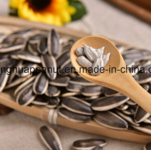 New Crop Sunflower Seeds From Shandong Guanghua pictures & photos