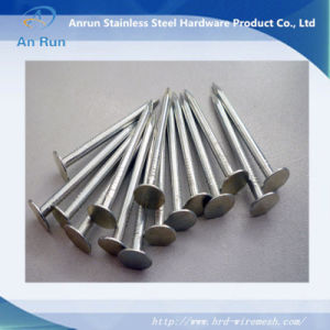 Umbrella Head Galvanized Roofing Nails (FACTORY) pictures & photos