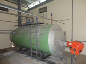 Guangmao High Quality Natural Oil-Combustion Steam Boiler pictures & photos