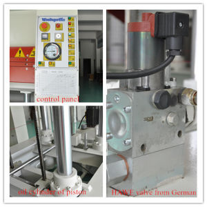 Woodworking Hydraulic Hot Press for Furniture pictures & photos