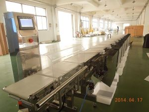 11 Grades Weight Sorting Machine pictures & photos