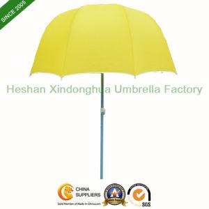 Small Polo Garden Umbrella Beach Umbrella for Display (BU-0036P) pictures & photos