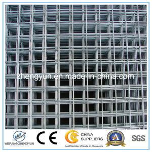Hot Sales Heavy Zinc Galvanized Welded Wire Mesh Panel pictures & photos