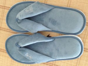 Hotel Slipper ---Flip Flop Type pictures & photos