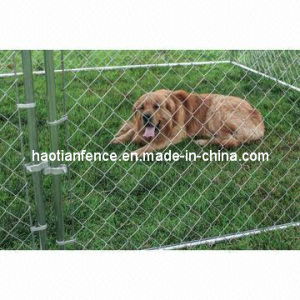 10X10X6ft Classic Galvanized Outdoor Dog Kennel pictures & photos