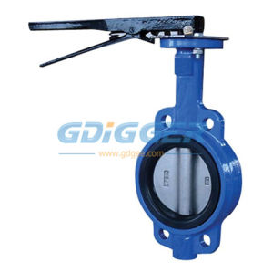 Manual Type Wafer Butterfly Valve (DG031) pictures & photos