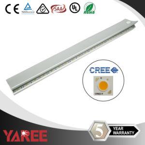 Aluminum LED Shelf Lighting