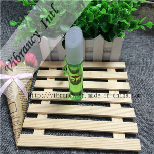 New Style Disposable Hotel Amenities and Hotel Shampoo pictures & photos