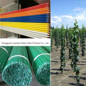 Light Weight Fiberglass FRP GRP Garden, Plant Stake for Support