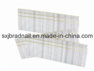 Factory Selling Galvanized Wire Brad Nails pictures & photos