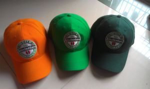 Sports Cap for Promotional Purposes (013) pictures & photos