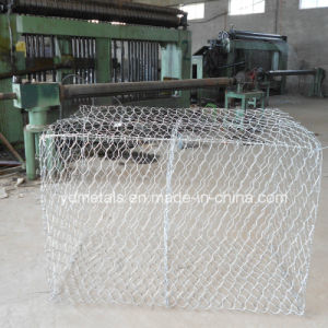 Gabion Basket with Hexagonal Hole pictures & photos
