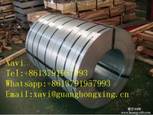 Euro Standard Steel Coil, Coil Steel S235series