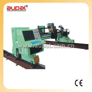 Large Scale Flame&Plasma Cutting Machine (AUPAL-6000)