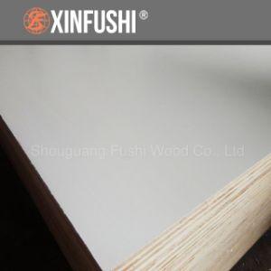 Warm White Paulownia Core Blockboard pictures & photos