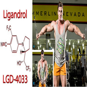 Body Supplements Sarms Lgd4033 Ligandrol 1165910-22-4 Androgenic pictures & photos