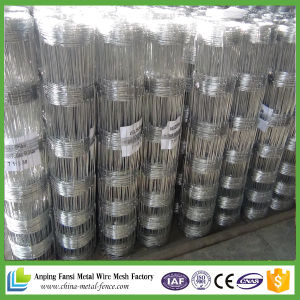 China Supply Cheap Galvanized Farm Field Fence for Cattle pictures & photos
