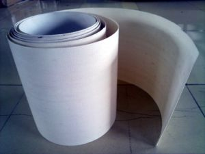 0.90mm PTFE Heavy Fabric pictures & photos