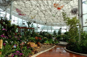 Eco-Sightseeing Greenhouse pictures & photos