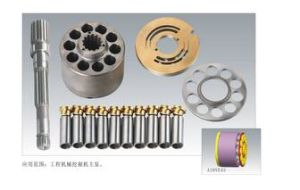 Application to Rexroth A10ve43 Hydraulic Pump Spare Parts pictures & photos