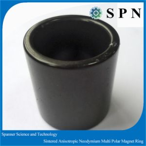 Permanent Rare Earth Neodymium Iron Born Multipole Ring Magnet pictures & photos