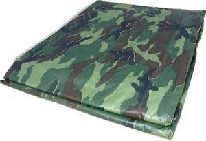 Waterproof PE Tarpaulin Poly Tarp Plastic Tarp with Reinforced Corners pictures & photos