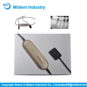 UK Ateco Dental X Ray Imaging System Dental X-ray Sensor pictures & photos
