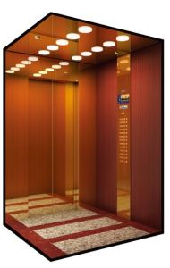 Commercial Passenger Elevator/Lift pictures & photos