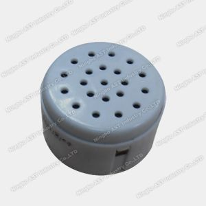 Recordable Sound Box, Digital Voice Recorder, Vibration Voice Box (S-2023A) pictures & photos