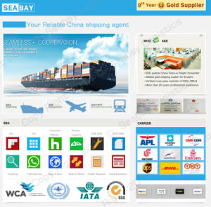 Container Shipping From China to Worldwide pictures & photos