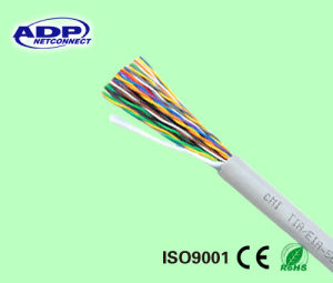 UTP 24AWG Bc10 Pairs Indoor Non Armored No Jelly PVC Sheath Telephone Cable pictures & photos