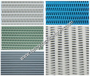 Spiral Filtering Mesh/ Polyester Dryer Fabric / Woven Mesh pictures & photos
